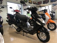 scooter-service-nsb-new-smyrna-black-wolf